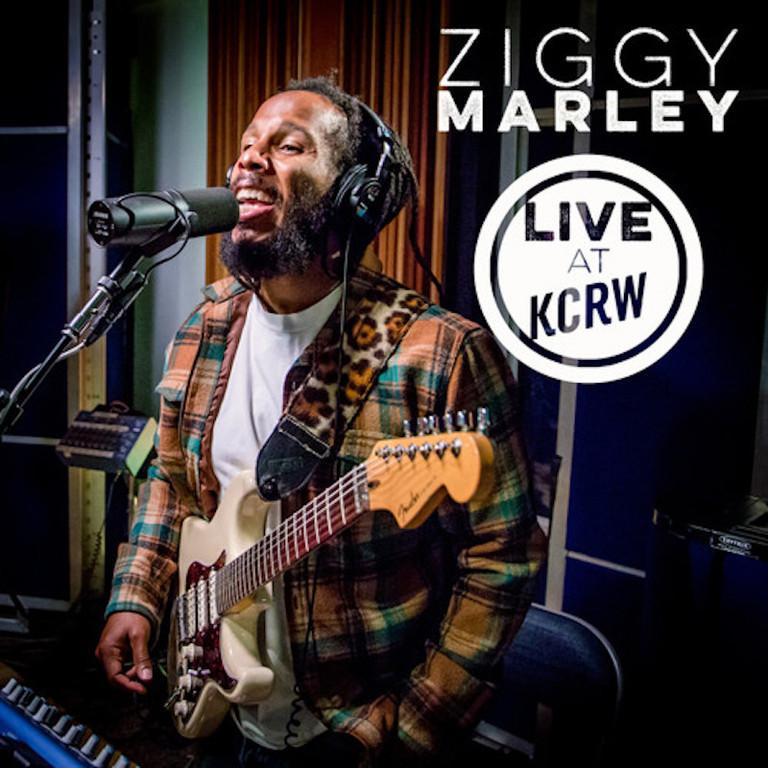 Various - Ziggy Marley In Jamaica