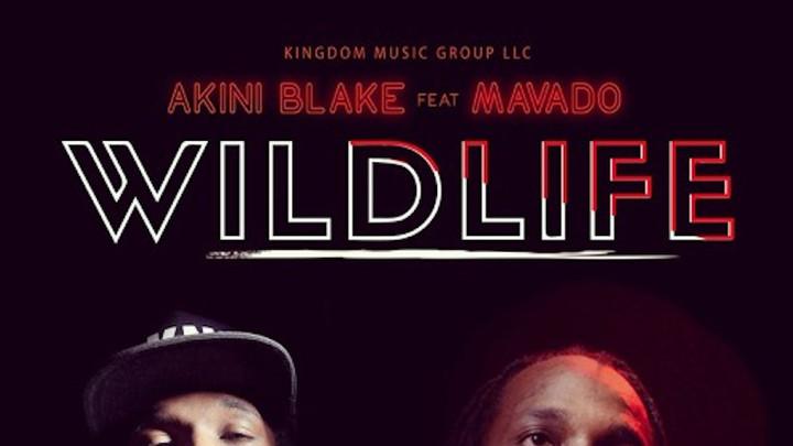 Akini Blake feat. Mavado - Wild Life [7/6/2018]