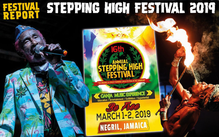 Festival Report - Stepping High Festival 2019