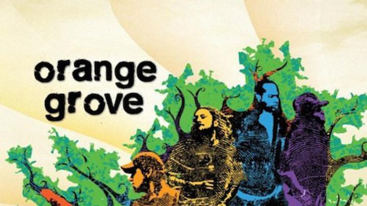 Orange Grove - You Decide It [6/12/2009]