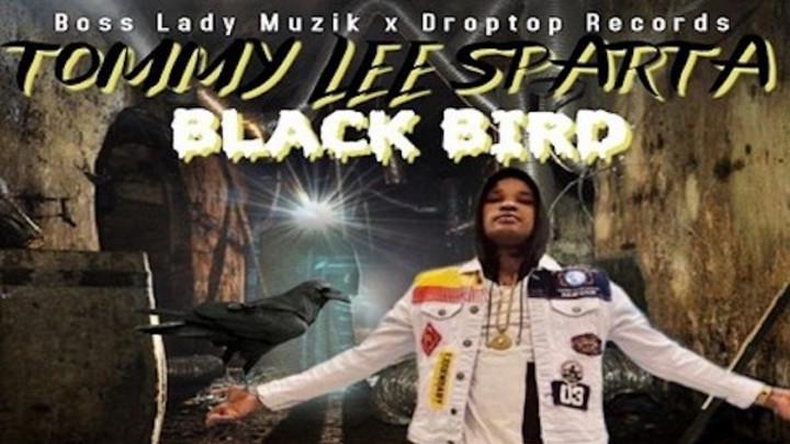 Tommy Lee Sparta - Black Bird [1/24/2020]