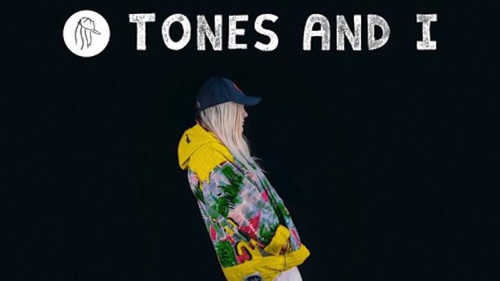 Tones and I - DanceMonkey (Pollensi Reggae RMX) [12/20/2019]