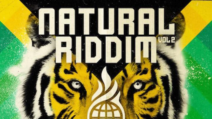 Natural Riddim Vol. 2 Mix [1/22/2016]