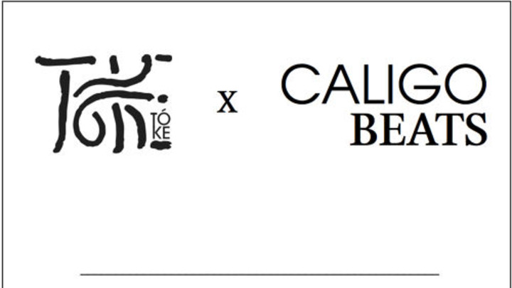 Tóke & Caligo Beats - Lost In The Limitless (RMX) [11/16/2014]
