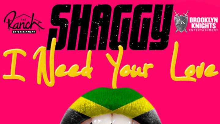 Shaggy - I Need Your Love feat. Faydee, Mohombi & Costi (Dancehall RMX) [1/8/2015]