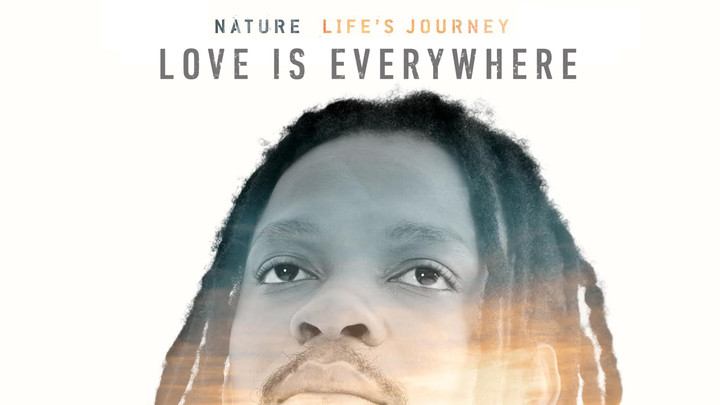 Nature - Love Is Everywhere [6/5/2015]
