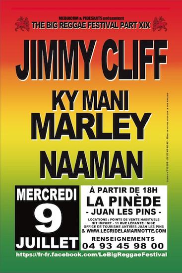 Big Reggae Festival 2014