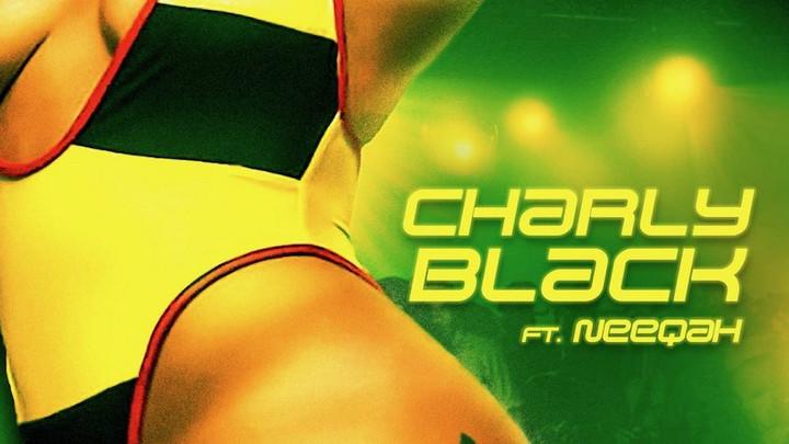 Charly Black feat. Neeqah - 876 [9/11/2020]