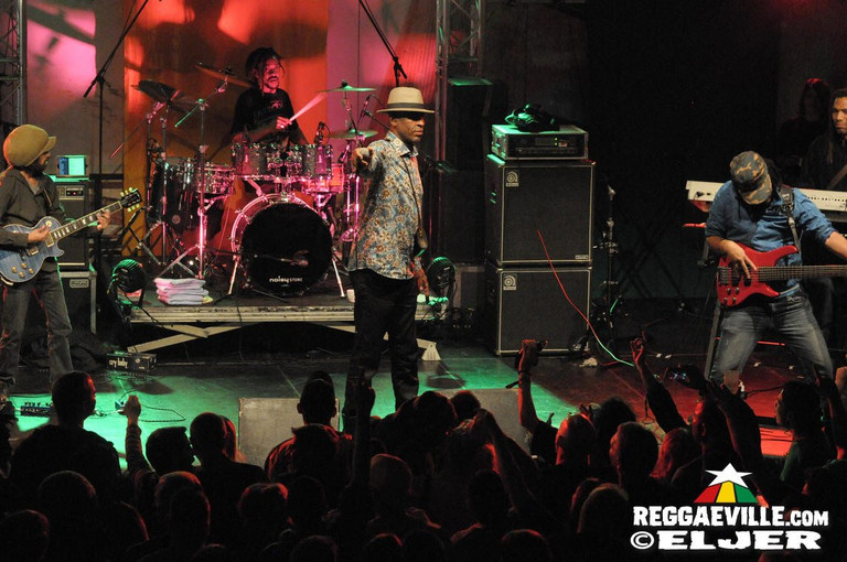 Various Reggae Party