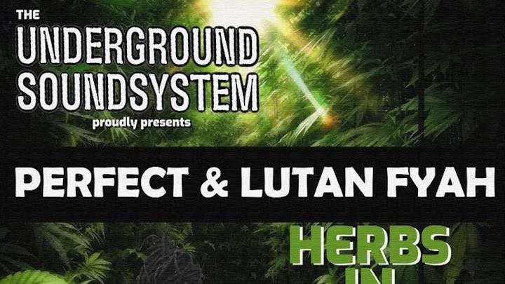 Perfect Giddimani & Lutan Fyah - Herbs In Herbs Out [7/2/2021]