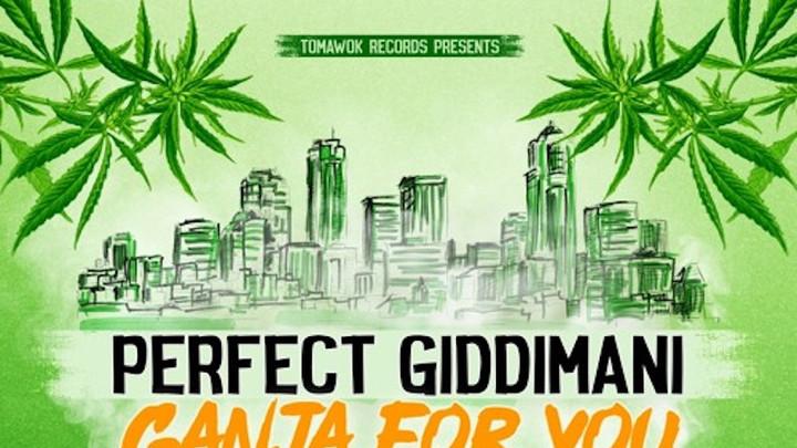 Perfect Giddimani - Ganja For You [4/20/2019]