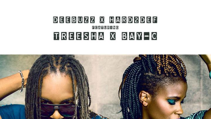 DeeBuzz & Hard2Def feat. Treesha & Bay C - Rude Gyal Swing [7/1/2016]