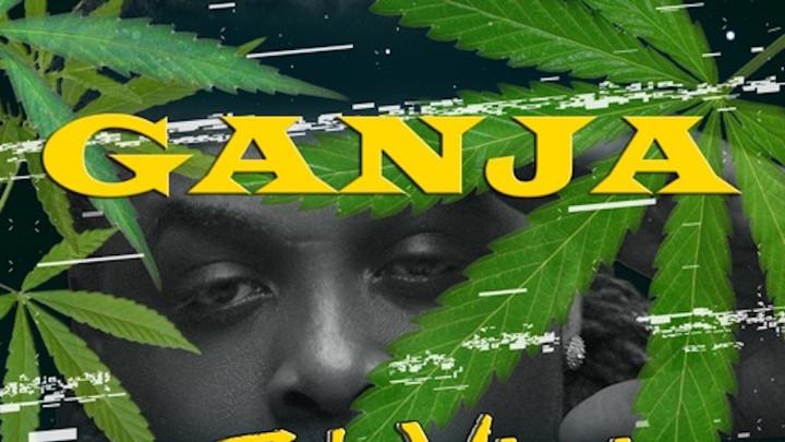 Jah Vinci feat. Riddim Travelers - Ganja [1/31/2020]