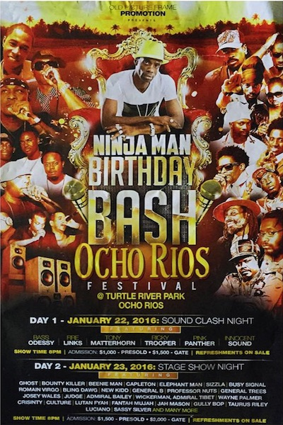 Ninja Man Birthday Bash 2016