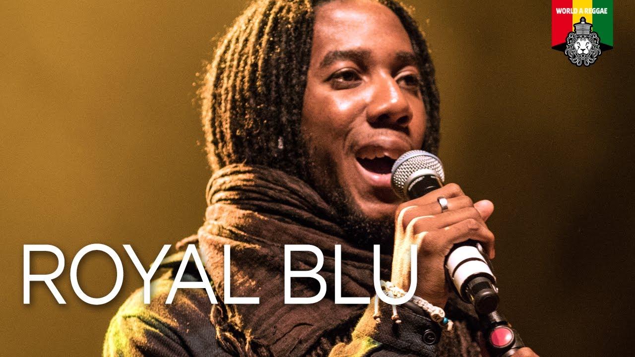 Royal Blu @ Reggae Fever - Groningen 2017 [6/24/2017]