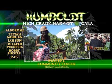 Jah9 @ Humboldt High Grade Harvest Gala 2014 [11/11/2014]