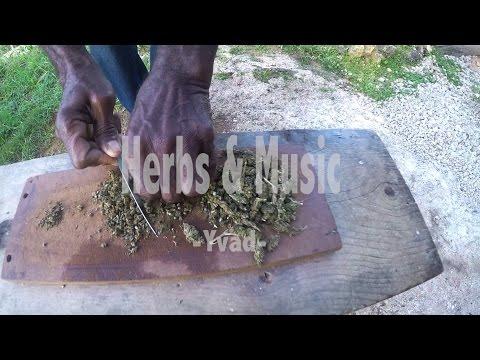 Yvad - Herbs & Music [8/7/2015]