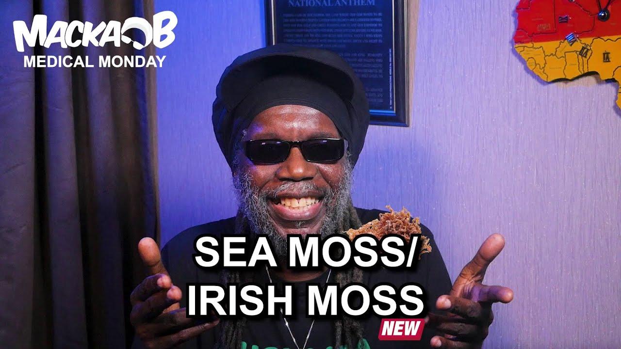 Macka B's Medical Monday - Sea Moss/ Irish Moss [10/19/2020]