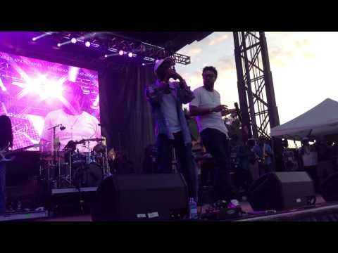 Beres Hammond & Shaggy - Can't Fight This Feeling @ Groovin In The Park 2014 [6/29/2014]