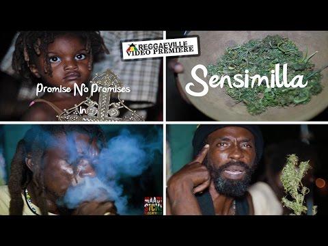 Promise No Promises - Sensimilla [4/19/2016]