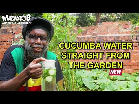 Macka B's Wha Me Eat Wednesdays - Cucumba Water Straight From The Garden [8/19/2020]