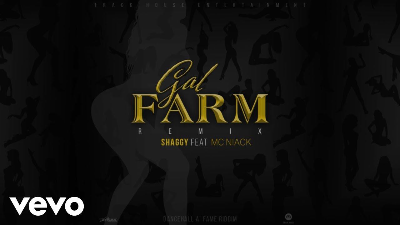 Shaggy & MC Niack - Gal Farm (Lyric Video) [4/1/2021]