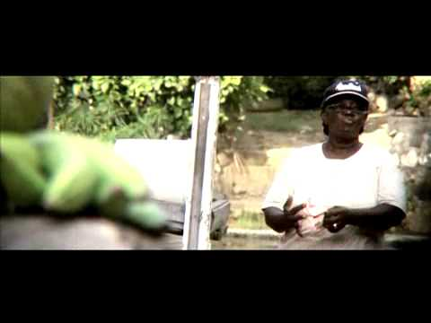 Iriepathie feat. Morgan Heritage - Never Give Up [3/12/2007]