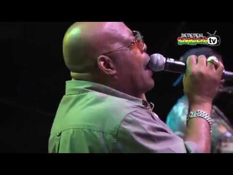 Brigadier Jerry & Josey Wales feat. Lloyd Parks @ Rototom Sunsplash 2015 (Full Show) [8/15/2015]
