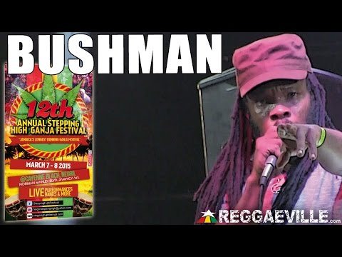 Bushman @ Stepping High Ganja Festival 2015 [3/8/2015]