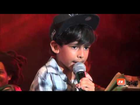 Damian Marley & Lil Zilla @ Reggae on the Bay 2015 [10/31/2015]