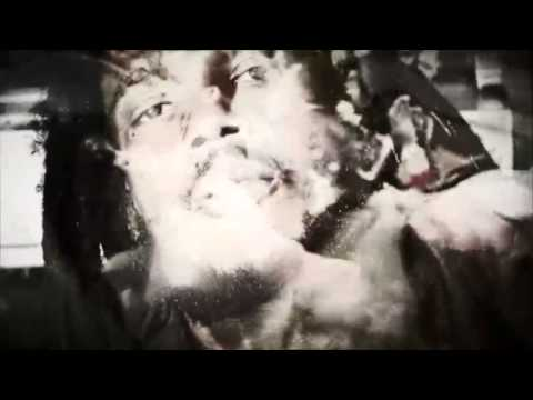 Stephen Marley feat. Akon & Buju Banton - My Conclusion [2/28/2013]