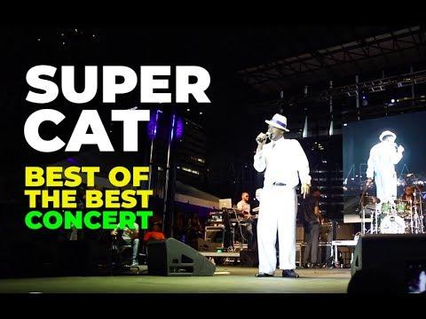 Super Cat in Miami, FL @ Best Of The Best 2019 [5/26/2019]