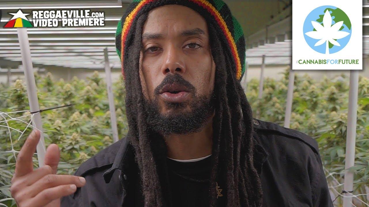 Lion D & Bizzarri - Cannabis For Future [5/26/2021]