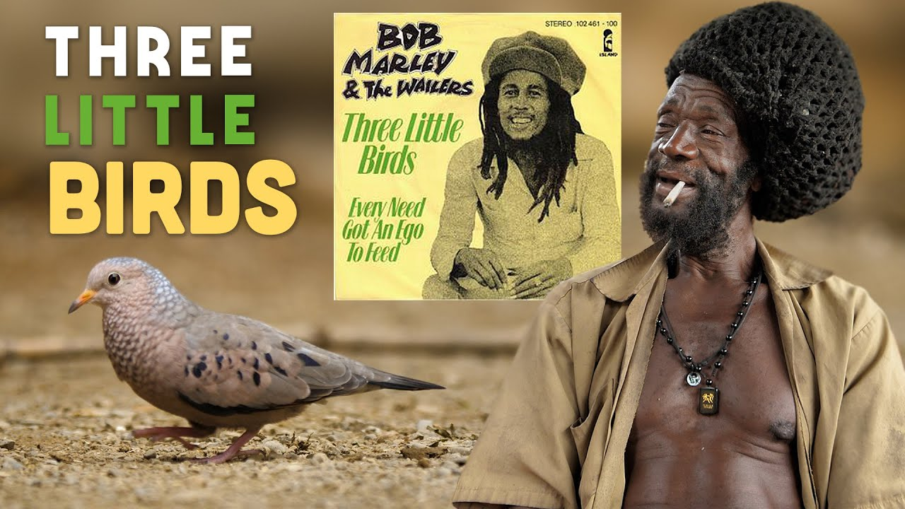 Ras Kitchen - The Three Little Birds Bob Marley was Singing About! [8/13/2021]
