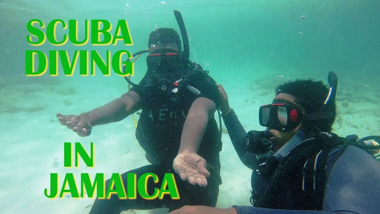 Scuba Diving In Jamaica With Yardie Divers @ Dutty Berry Show [9/21/2018]