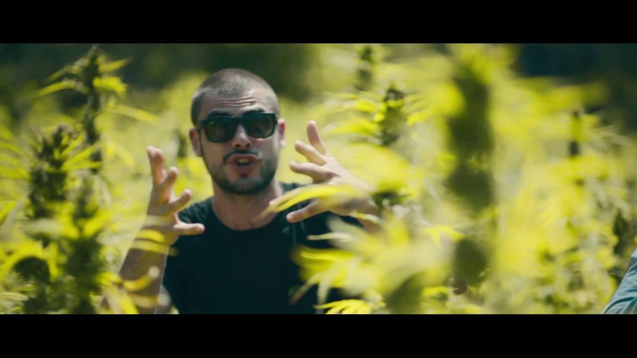 Kaas feat. Miwata - Jamaica, Jamaica [6/10/2016]