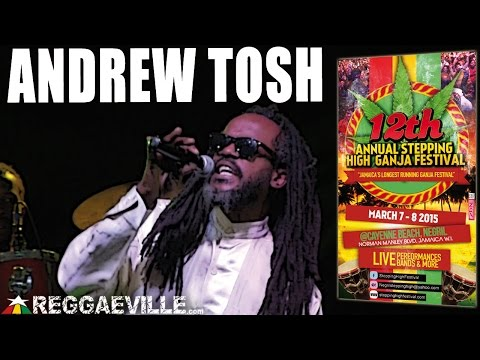 Andrew Tosh - Legalize It @ Stepping High Ganja Festival 2015 [3/8/2015]