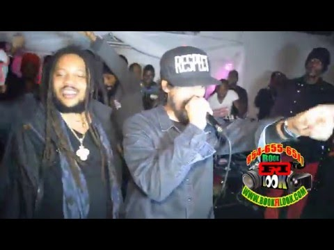 Stephen Marley, Damian Marley, Spragga Benz & Determine @ Party With The Stars 2016 #2 [2/12/2016]