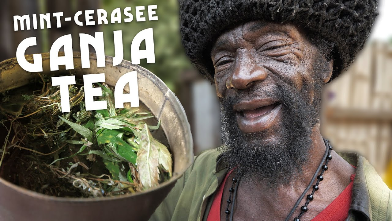 Ras Kitchen - 10 Foot Herb Tree Tea with Mint And Cerasee [7/10/2020]