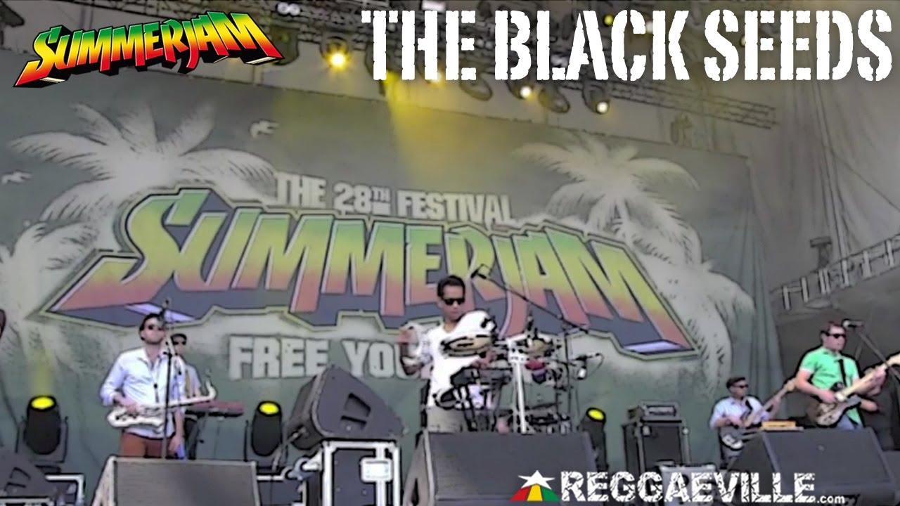 The Black Seeds @ SummerJam [7/7/2013]
