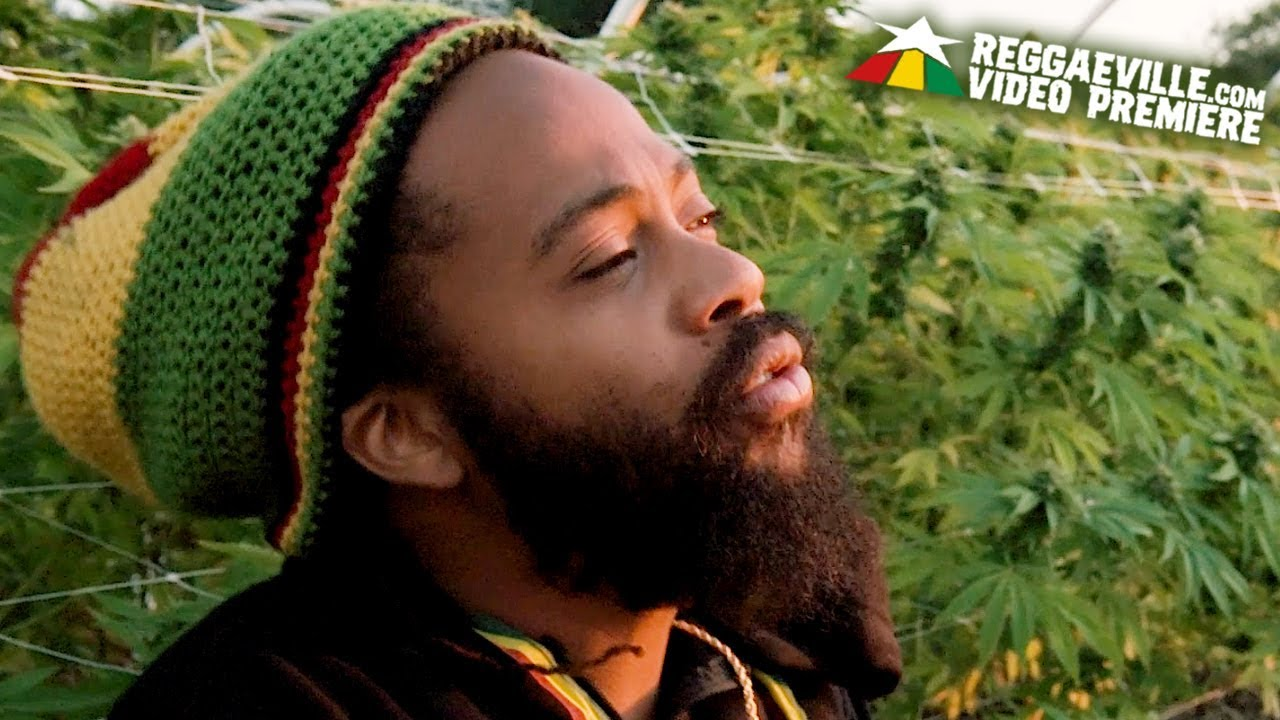 Blaze Mob - Jah Provide A Way [4/20/2019]