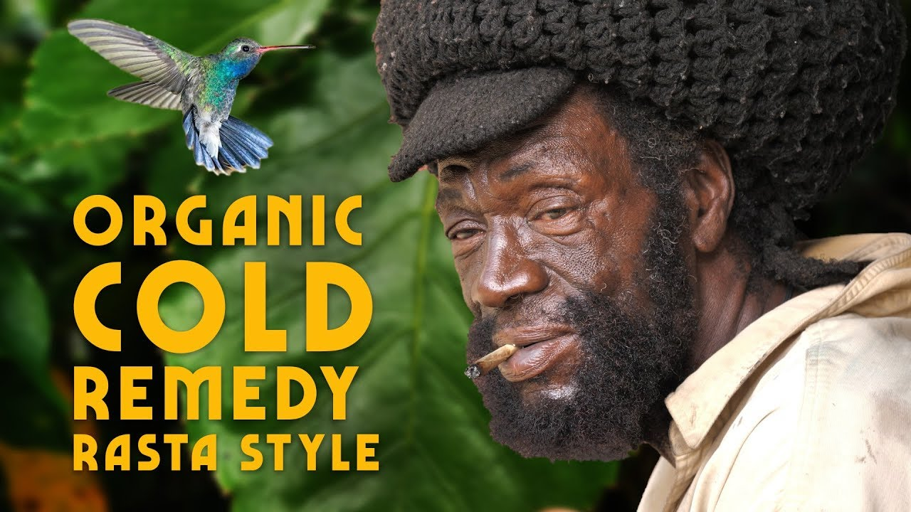 Ras Kitchen - Organic Cold Remedy (Rasta Style) & Baby Hummingbirds! [10/4/2019]