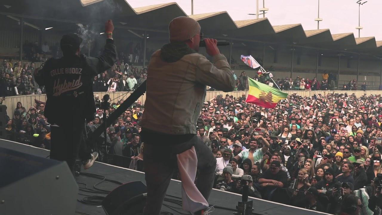Collie Buddz @ California Roots Festival 2019 (Recap) [5/30/2019]