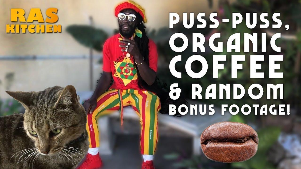 Ras Kitchen - Puss-Puss, Organic Coffee & Random Extra Footage! [9/25/2019]