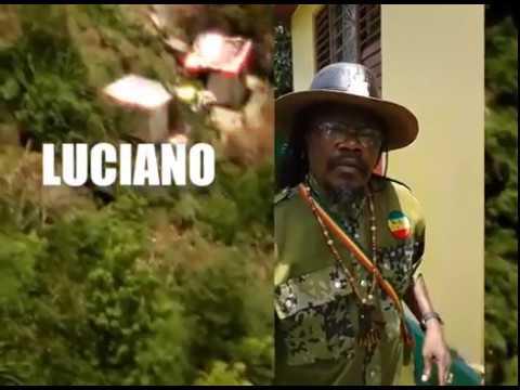 Luciano @ Afrikanisches Kulturfest 2017 [5/24/2017]