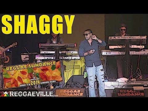 Shaggy @Reggae Sundance 2014 [8/10/2014]