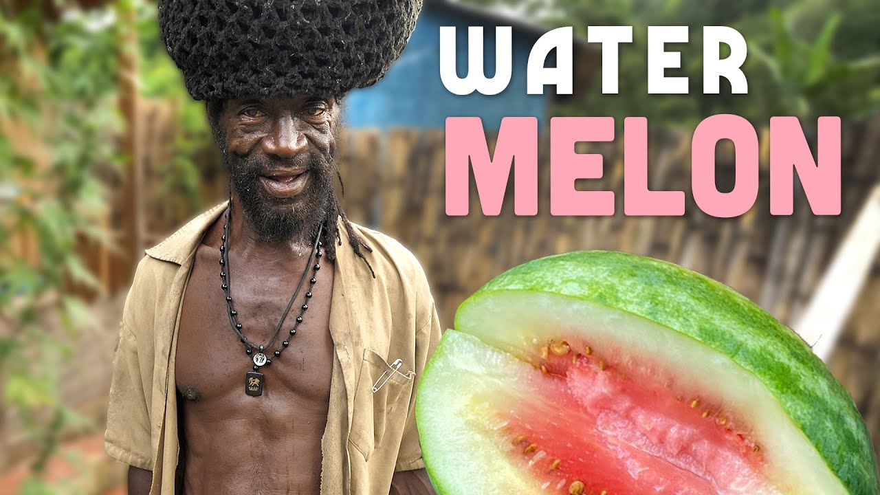 Ras Kitchen - Picking Watermelon! Fresh from Yaad [9/11/2021]