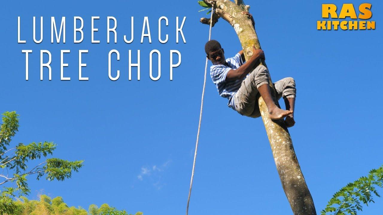 Ras Kitchen - Lumberjack Tree Chop, Jamaica Style! [5/17/2019]