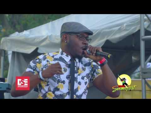 Tarrus Riley feat. Iba Mahr, Beenie Man, Popcaan & Zagga @Reggae Sumfest 2016 [7/23/2016]