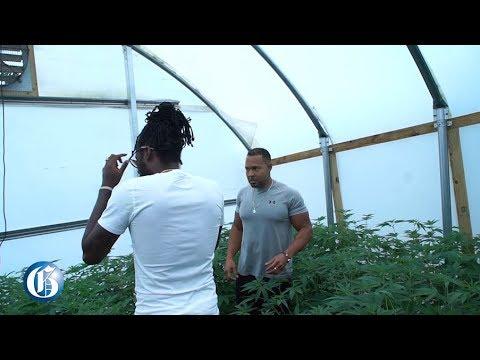 Aidonia visits Epican Farm (Jamaica Gleaner) [7/19/2019]